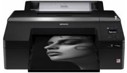 Epson SC-P5000 Ink
