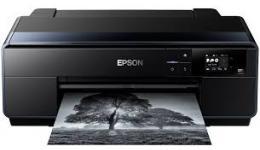 Epson SC-P600 Ink