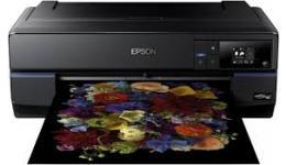 Epson SC-P800 Ink